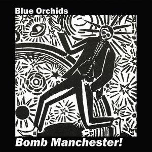 Blue Orchids - Disney Boys