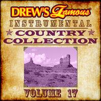 Drew's Famous Instrumental Country Collection — The Hit Crew