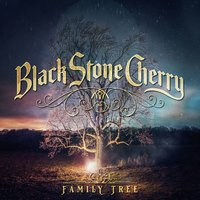 Southern Fried Friday Night — Black Stone Cherry