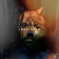 Intuition — RRTheGiant