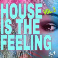 House Is the Feeling, Vol. 3 — сборник