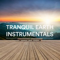 Tranquil Earth Instrumentals — Calien