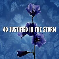 40 Justified in the Storm — Rain Sounds & White Noise
