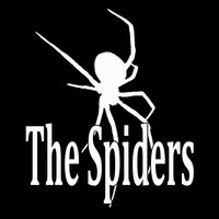 The Spiders — The Spiders