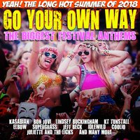 Go Your Own Way - The Biggest Festival Anthems — сборник