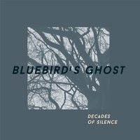 Decades of Silence — Bluebird's Ghost