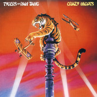 Crazy Nights — Tygers Of Pan Tang