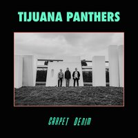 Path of Totality — Tijuana Panthers