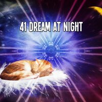 41 Dream at Night — Spa Music Paradise
