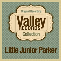 Valley Records Collection — сборник
