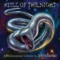 Still Of The Night: A Tribute To Whitesnake — сборник