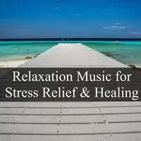 Relaxation Music for Stress Relief and Healing - Soothing Sounds for Better Mental Health, Deep Focus, Pefect Sleep, Concentration and Study — Nature Sounds Nature Music, Natural White Noise for Babies & Fresh Water Sounds, Nature Sounds Nature Music, Natural White Noise for Babies, Fresh Water Sounds