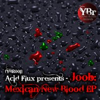 Acid Flux Presents: Joob - Mexican New Blood EP — Acid Flux, Joob
