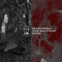 Initial Mass Function EP — Non Reversible