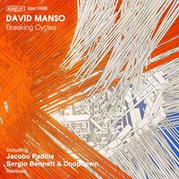 Breaking Cycles — David Manso