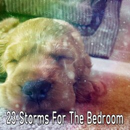 23 Storms for the Bedroom — Rain Sounds & White Noise