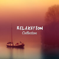 #15 Relaxation Collection for Buddhist Meditation and Yoga — Yoga, Buddhist Meditation Music Set, Meditation Zen Master