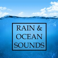 Rain & Ocean Sounds Study Compilation - The Best Study Music for Deep Focus, Creativity, Relaxation, Stress-Free Learning and Meditation, and Better Mental Health — Meditation Rain Sounds, Meditation Zen Master, Meditation Rain Sounds