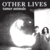 Tamer Animals — Other Lives