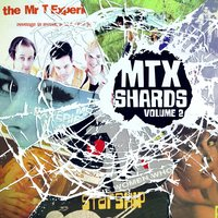 Shards, Vol. 2 — Mr. T Experience