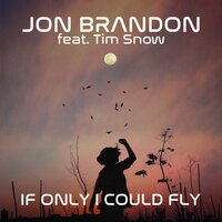 If Only I Could Fly — Jon Brandon