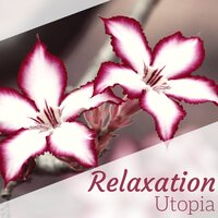 Relaxation Utopia - The Very Best Sounds of Nature to Relax — Mind Relax Ensemble
