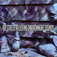 68 Stress Relieving Environment Sounds — Massage