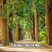 75 Outdoor Tracks For Night — Nature Sound Series, Sounds Of Nature, Nature Sound Series