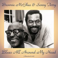 Blues All Around My Head — Brownie McGhee & Sonny Terry