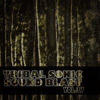 Tribal Sonic Soundblast,Vol.37 — сборник