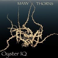 Many Thorns — Oyster IQ