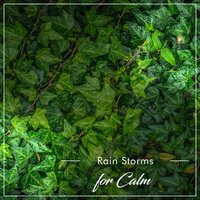 20 Rain Reflection Storms for Ultimate Calm — Ambient Nature White Noise, ASMR Rain Sounds, Rain Hard, ASMR Rain Sounds, Ambient Nature White Noise, Rain Hard