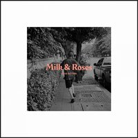 Milk & Roses — Loose Buttons