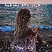 Instrumental Music, Pt. 16 — anies birds