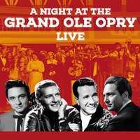 The Grand Ole Opry - 20 Live Country Hits — сборник