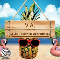 Secret Summer Weapons 03 — сборник