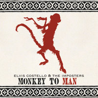 Monkey To Man — Elvis Costello