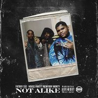Not Alike — Fat Boy SSE