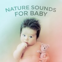 Nature Sounds for Baby – Calm Sleeping Music for Baby, Peaceful Dreams, Quiet Night, Calm Baby Music, Soothing Sounds — Baby Sleep
