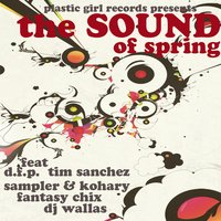 Plastic Girl Records — The Sound Of Spring