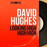 Looking High High High — David Hughes