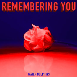 Remembering You — Water Dolphins