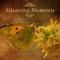 Silencing Moments – Relaxation Melodies for Listening, Chillout, Haydn, Piano Music — Relaxing Piano Music Consort, Йозеф Гайдн