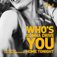 Who's Gonna Drive You Home Tonight (25 Deep-House Weekenders) Vol. 2 — сборник