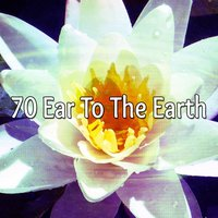 70 Ear To The Earth — Meditation Zen Master