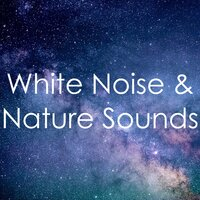18 White Noise & Nature Sounds — Meditation & Stress Relief Therapy, Spa Music Paradise, Sounds of Rain & Thunder Storms, Sounds of Rain & Thunder Storms, Meditation & Stress Relief Therapy, Spa Music Paradise