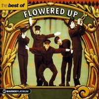 The Best of Flowered Up — Flowered Up