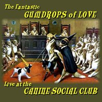 Live at the Canine Social Club — W. Michael Lewis, Terry Rangno, The Fantastic Gumdrops of Love