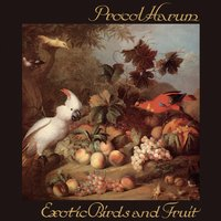 Exotic Birds and Fruit — Procol Harum