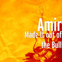 Made It out of the Bull — Amir